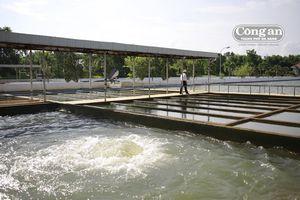 Dawaco khuyến cáo người dân sử dụng nước tiết kiệm