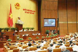 Quốc hội thảo luận sôi nổi về dự án Luật Đặc xá (sửa đổi)