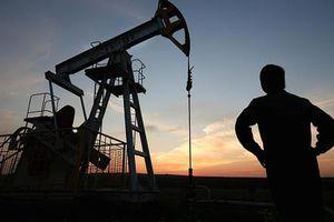 Giá dầu thô tiếp tục lao dốc