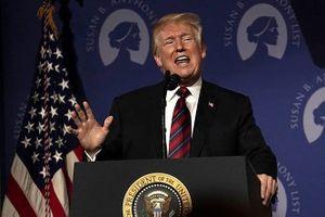 Kết quả bầu cử Quốc hội Mỹ: Thách thức lớn cho Tổng thống Trump