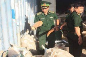 Khen thưởng lực lượng phát hiện, bắt giữ 10 tấn ngà voi, vảy tê tê