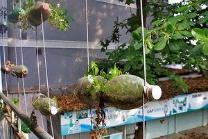 Cảnh khó tin bên trong ngôi trường 2 tầng bỏ hoang ở Sài Gòn
