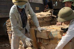 Quảng Trị: Còn tồn 80 tấn giấy phế liệu do chứa gỗ lậu
