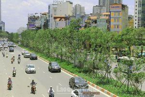 Hà Nội có thêm hơn 380 nghìn cây xanh