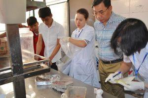 Thanh tra hoạt động dược, mỹ phẩm và an toàn thực phẩm tại 18 tỉnh, thành