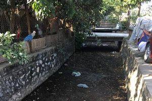 Chính quyền và người dân xã Dương Liễu mong có nhà máy xử lý nước thải