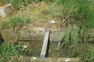 Bình Định: Kết quả kiểm tra thanh giằng bằng bê tông cốt gỗ kênh S8 xã Phước Quang