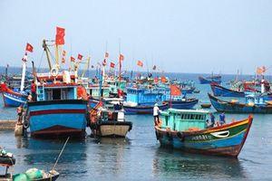 Nghệ An: Bắt giữ 13 phương tiện sử dụng kích điện khai thác hải sản trên biển