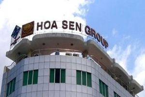 Chuyển nhượng hơn 7.000m2 đất, HSG thu về gần 140 tỷ đồng
