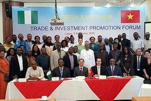 Thúc đẩy thương mại và đầu tư Việt Nam - Nigeria