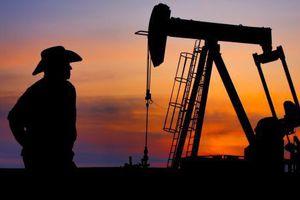 Giảm liên tục, giá dầu chạm đáy 8 tháng