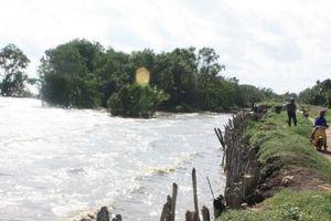 Mực nước sông Cửu Long tiếp tục lên