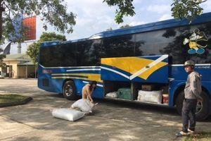 Thanh Hóa: Bắt xe khách vận chuyển 2,5 tạ bì lợn bốc mùi hôi thối