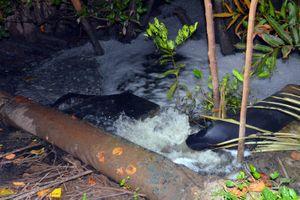 Bắt quả tang cơ sở sản xuất khô xả thải trực tiếp ra môi trường