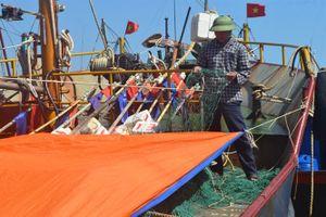 Nghị định 67 ở Hà Tĩnh: Ngân hàng 'tiến thoái lưỡng nan'
