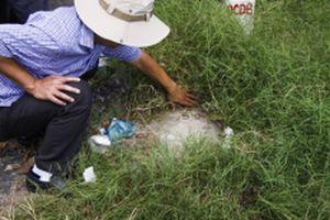Bàn giao cọc tim tuyến cầu Mỹ Thuận 2 tại Vĩnh Long