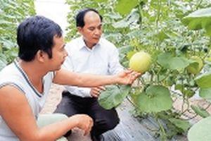 Chuyển biến tích cực trong xây dựng nông thôn mới ở Ứng Hòa