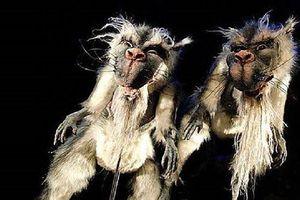Bunyip, loài quái vật đã tuyệt chủng ở Australia