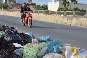 Nhà máy cứu 'vỡ trận rác' ở Quảng Ngãi lại chậm tiến độ
