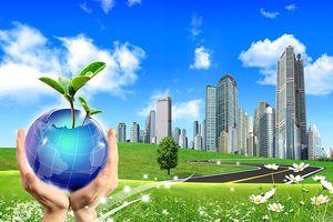 Lập báo cáo bền vững, doanh nghiệp giật mình một ngày tiêu đến 2 tỷ đồng tiền điện