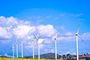 Điện gió - Ì ạch khai phá tiềm năng
