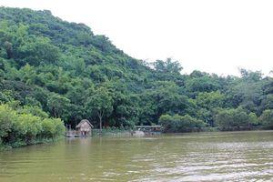 Hà Nội: Xử lý cấp bách chống sạt lở đê hồ Quan Sơn trong năm 2018