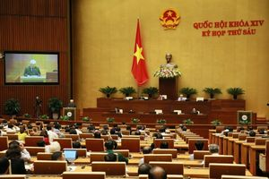 Quốc hội nghe báo cáo về dự án Luật Giáo dục (sửa đổi)