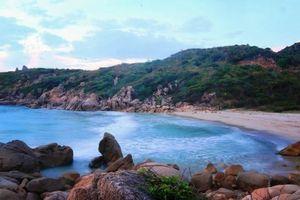 Cơ hội bứt phá cho du lịch Việt