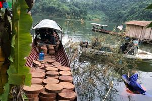Bắt đối tượng dùng thuyền máy vận chuyển trái phép gỗ quý trên sông Đà