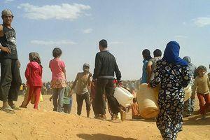 Những kẻ khủng bố trong trại Rukban sử dụng dân thường làm lá chắn sống