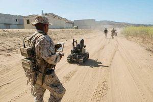 Quân đội Mỹ phát triển robot 'ngựa thồ' cho bộ binh cấp phân đội