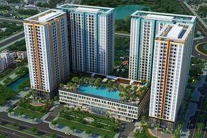 TP. Hồ Chí Minh đề nghị Chính phủ không đấu giá khu đất ở Quận 2 của Novaland