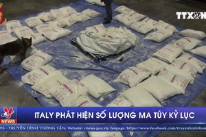 Italy phát hiện số lượng ma túy kỷ lục