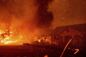 California: 30.000 người sơ tán vì cháy rừng
