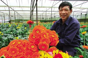 Toàn cảnh nông thôn mới Đà Lạt