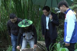 HLV Hà Giang: Khảo sát các mô hình phát triển kinh tế tại Mèo Vạc