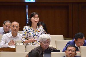 Đại biểu Quốc hội đề nghị 'giảm tiền kiểm, tăng hậu kiểm' với phân bón