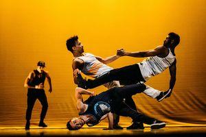 Đoàn nghệ thuật hip-hop vô địch thế giới đến Việt Nam