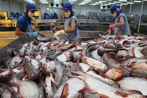 Xuất nhập khẩu thủy sản An Giang (AGF) vướng vụ kiện chống phá giá nên chậm công bố thông tin