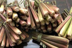 Cư dân mạng lùng sục củ niễng Nam Định, xuýt xoa với những món ngon thuộc dạng 'cực phẩm'