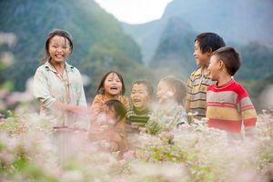 Tháng 11, đến Hà Giang ngắm mùa tam giác mạch tuyệt đẹp