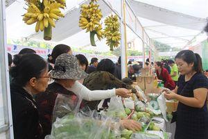 Khai trương Trung tâm giới thiệu sản phẩm nông nghiệp sạch tỉnh Nam Định