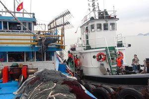 Cứu và lai dắt tàu cá cùng 19 ngư dân vào bờ an toàn