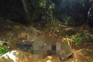 Xác chết mất đầu, tay, chân trên núi: Thông tin nóng