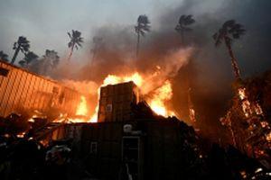 Cháy rừng lan rộng tại California, hàng trăm nghìn người sơ tán