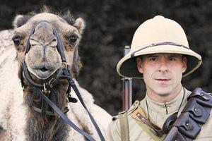 Kỵ binh lạc đà - 'taxi chiến trường' số 1 ở sa mạc