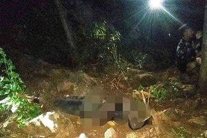 Thanh Hóa: Phát hiện thi thể người đàn ông mất đầu trên núi