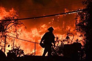 Hàng loạt sao lớn ở Mỹ 'bỏ của chạy lấy người' vì cháy rừng kinh hoàng