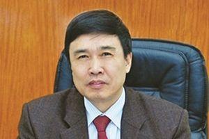 Chân dung nguyên Tổng giám đốc BHXH Việt Nam Lê Bạch Hồng