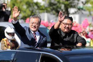 Hàn Quốc kiểm tra phóng xạ trong 2 tấn nấm Triều Tiên tặng